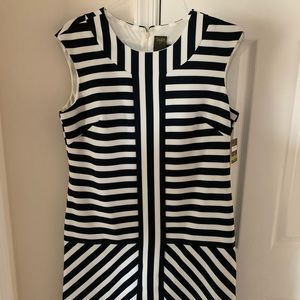 Taylor Navy and White Shift Dress NWT